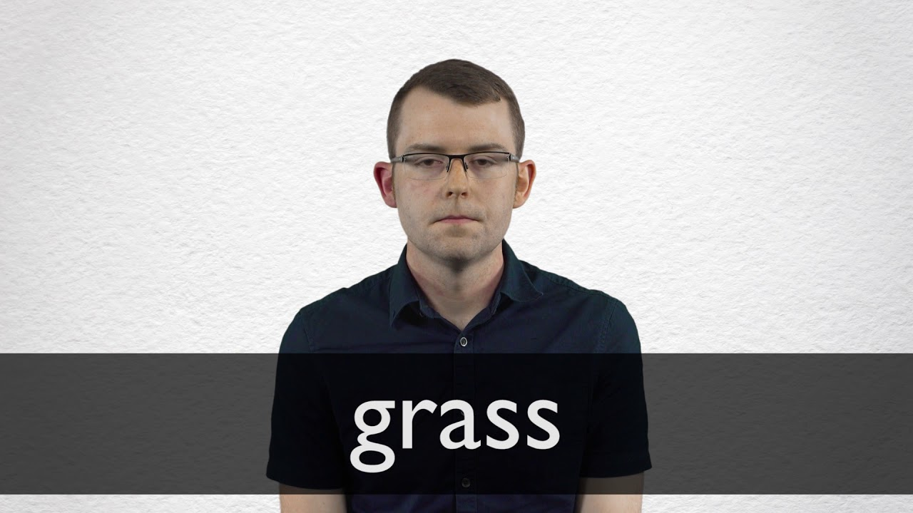 How to pronounce GRASS in British English