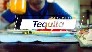 Wstawaki [145] Tequila