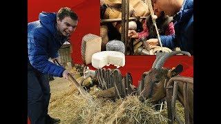 Faire du fromage de chèvre de A à Z
