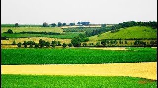 Zomerpracht in het Zuid-Limburgs Heuvelland