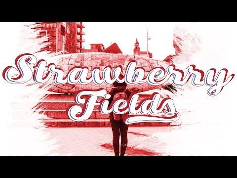 Strawberry Fields (A 4k Travel Film by Josh Vasseur)