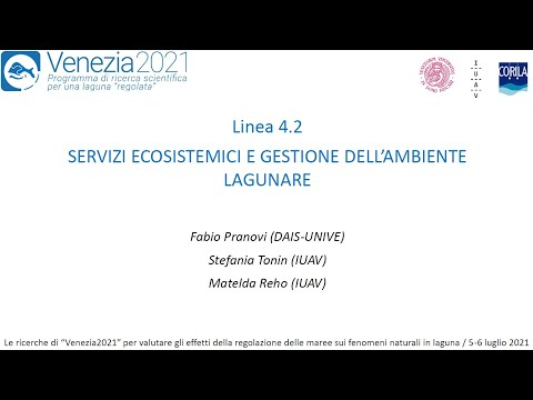 Servizi ecosistemici e gestione dell'ambiente lagunare