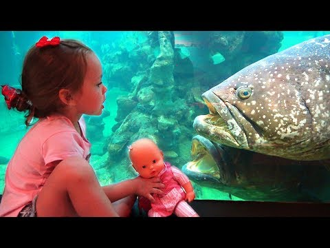Maya In The Oceanarium Looks At Different Fishes