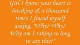 Chris Brown - Say Goodbye Lyrics On Screen