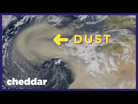 How Dust Allows for Life on Earth - Cheddar Explores