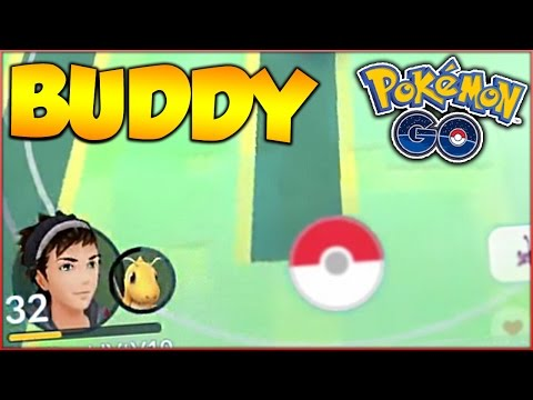 WHAT WILL HAPPEN IF YOU WALK 100km WITH YOUR BUDDY POKEMON! DOUBLE BUDDY POKEMON?! (My Thoughts)