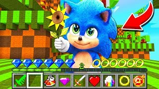 How to play SONIC THE HEDGEHOG MOVIE in Minecraft! Challenge NOOB VS PRO Funny Animation Real Life