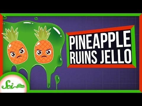 Why Do Pineapple and Kiwi Ruin Gelatin?