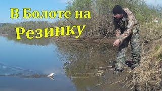 Рыбалка в Болоте на Резинку. Ловля Карася и Сазана. Как Забросить резинку с Берега