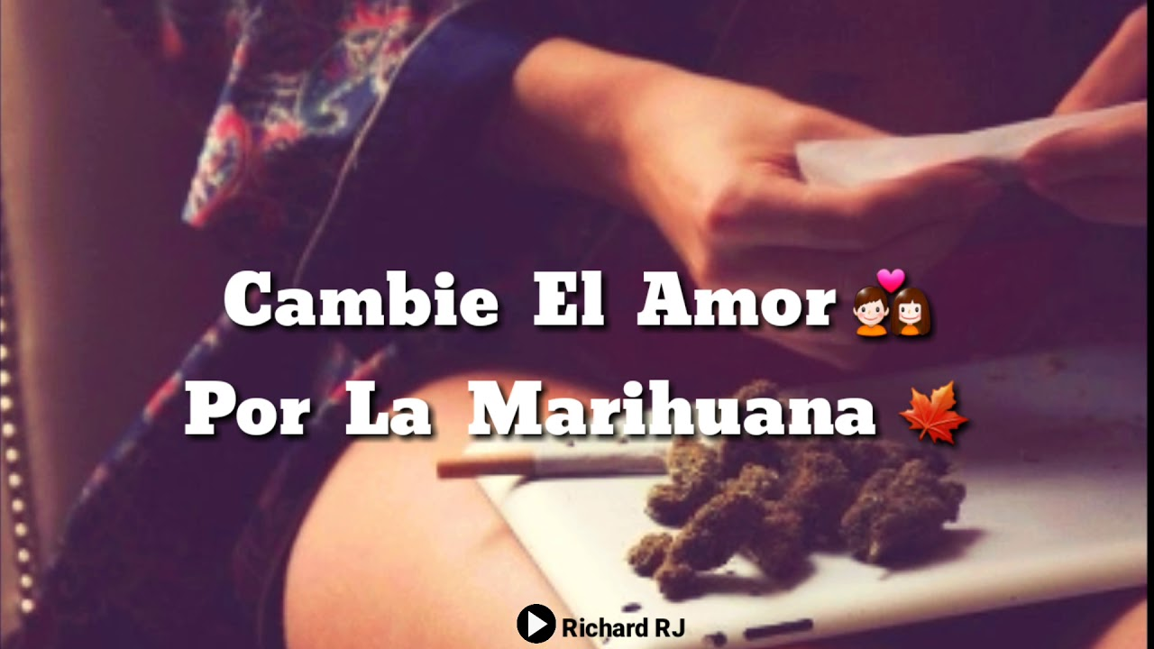 Estados Para Whatsapp Cambie El Amor Por La Marihuana