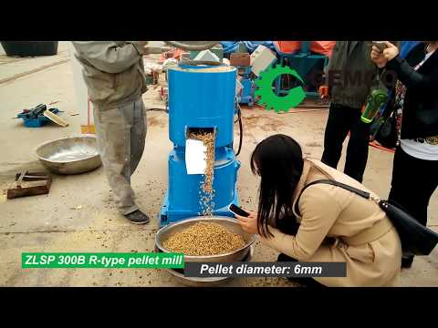 What is small pellet machine used for? (make biomass pellet )