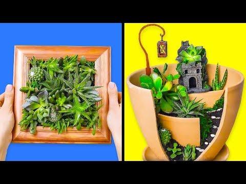 10 INCREÍBLEMENTE HERMOSAS MANUALIDADES CON PLANTAS