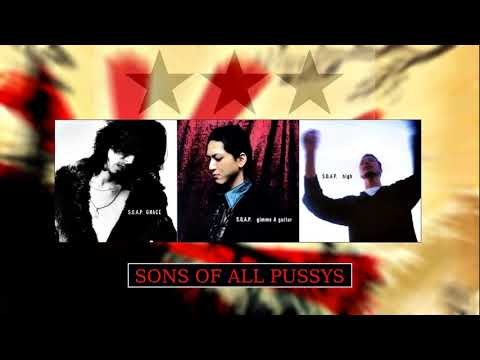 Artist/Band: Sons Of All Pussys | S.O.A.P.| Title: Red Sky Track: #4 Album: High! Year: 2003 Genre: Japanese Rock, Alternative Rock Lyrics: 愛する人よ 輝ける様よ ...