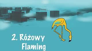 Sowa - Różowy Flaming (prod. Mateusz Żak)