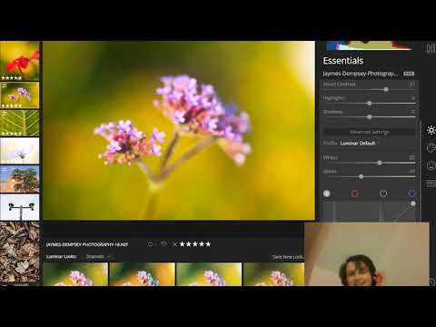 The Luminar Essentials Panel: Your Guide to Basic Editing in Luminar 4