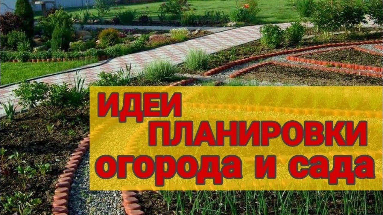 Идеи планирования сада, огорода и дачи. Ландшафтный дизайн участка