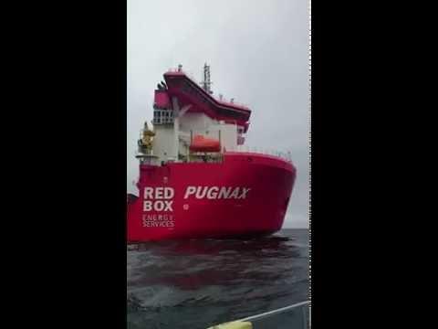 Pugnax and Ocean Crest in Belfast Lough Bangor Northern Ireland