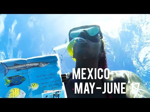 🇲🇽 MEXICO!! 🇲🇽 · Travel Journal Flip-Through + VLOG · What I Did // What I Drew