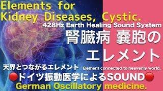 🔴ドイツ振動医学による腎臓病 嚢胞編|Kidney Diseases, Cystic by German Oscillatory Medicine.