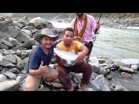 Himalayan Teesta River Fishing