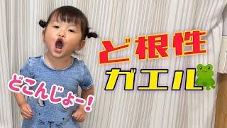 【ど根性ガエル】2歳9ヶ月 村方乃々佳 노노카