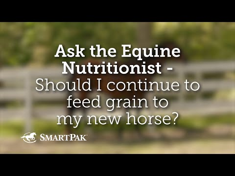 Ask The Equine Nutritionist - Should I Continue To Feed Grain To My New Horse?