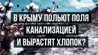 """Крым """"выпьет"""" Азовское море?"""