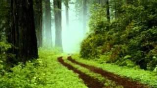 """Nachtgesang im Walde"" op139 n.2 (Schubert) JOSE LUIS BASSO / Coro del Maggio Musicale"