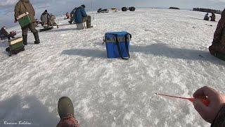 Рыбалка В ПОИСКЕ КРУПНОЙ ПЛОТВЫ и СОРОГИ Первый и Последний лёд на реке и водохранилище