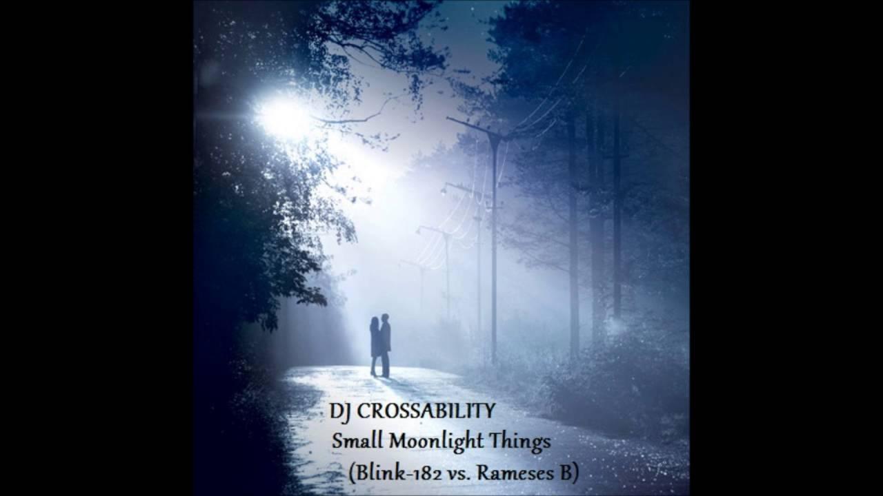 DJ CROSSABILITY - Small Moonlight Things (Blink-182 vs  Rameses B) Mashup