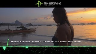 Ilya Fly - Tender Evening (VoIces Dancing In The Moonlight Remix) [Music Video] [Omniset Records]