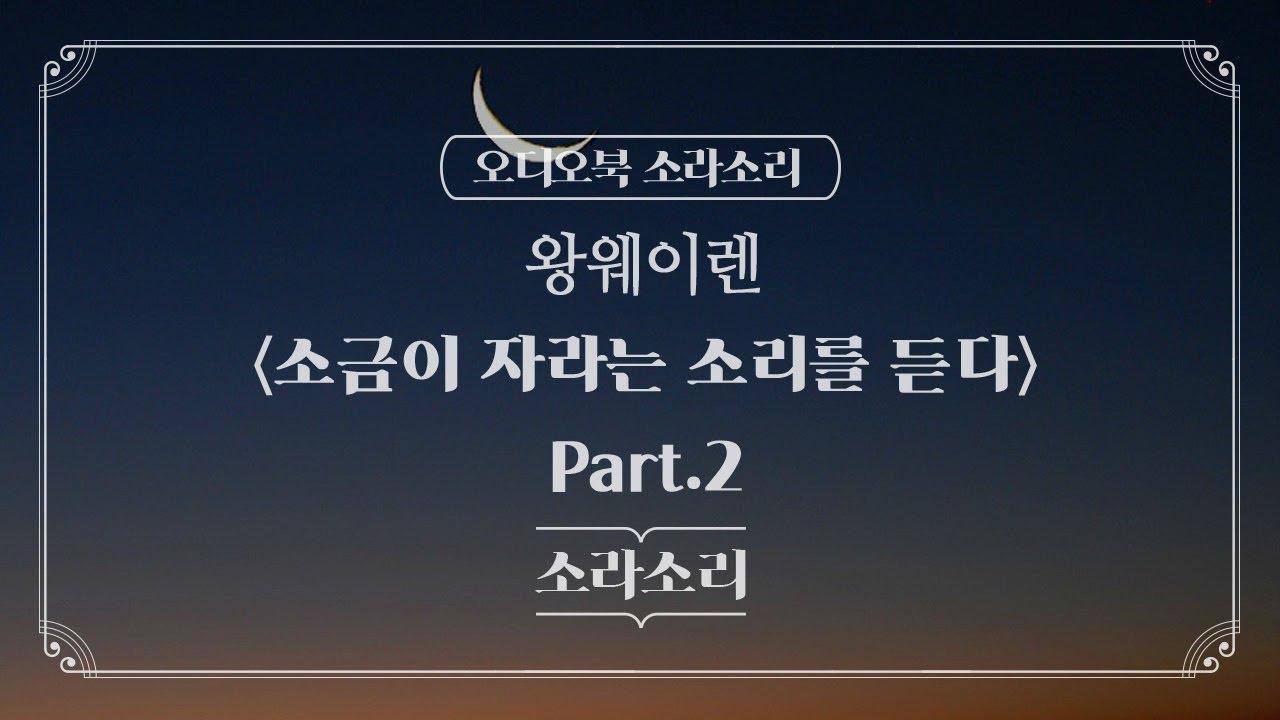 오디오북 | 소금이 자라는 소리를 듣다  Part.2 - 성우 윤소라 |
