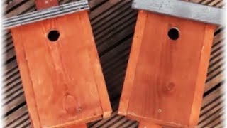 We are Hanging Bird Boxes Today - Northeast of England
