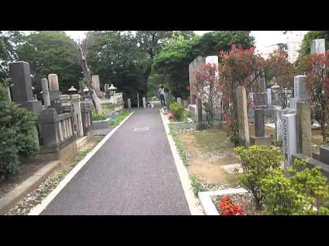 Walking through Yanaka Cemetery