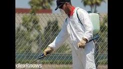 Stype Termite & Pest Control Inverness FL 34452-7869