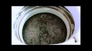 酸素系漂白剤(洗濯用)で5年使った洗濯槽を掃除! thumbnail