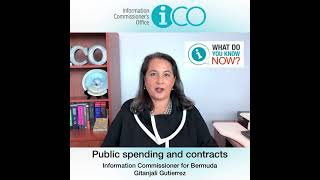 """""""What Do You Know Now?"""" Public spending and contracts"""
