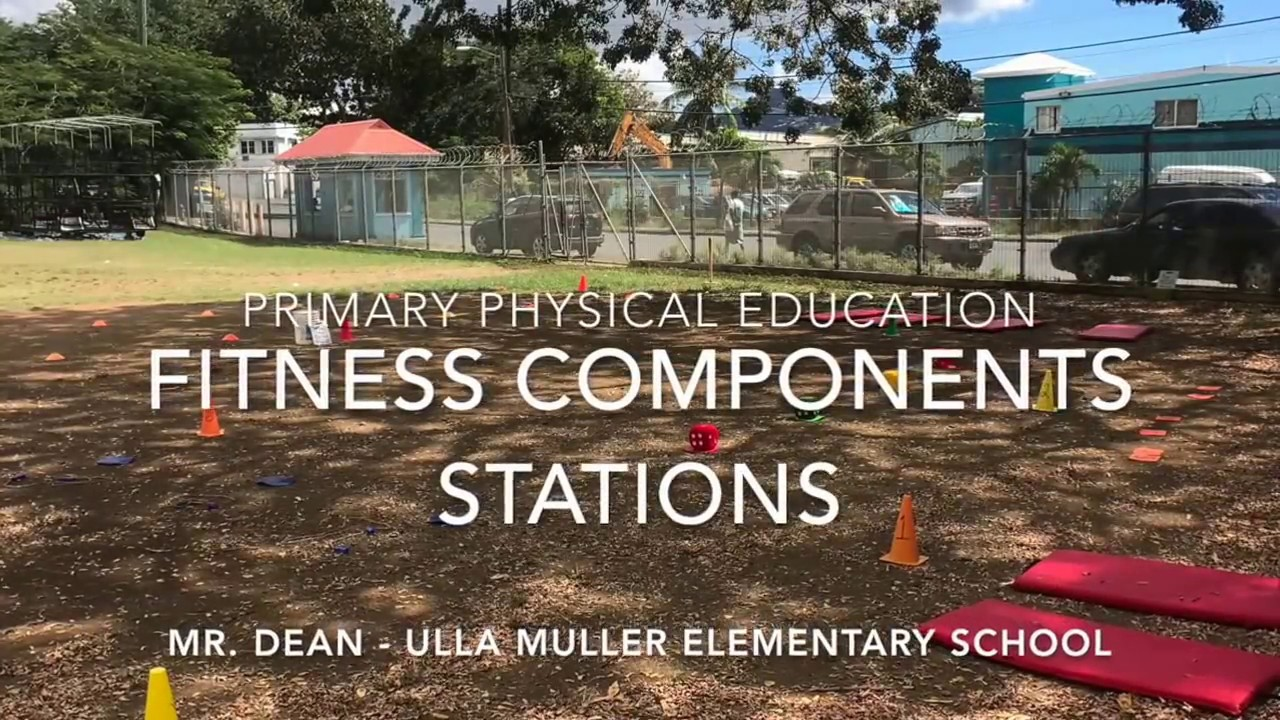 Elementary Physical Education Fitness Components Stations