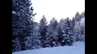 REEFER CONTAINER CABIN HOME IN THE OKANOGAN HIGHLANDS IN JANUARY -- 3 OF 4, WALK 1