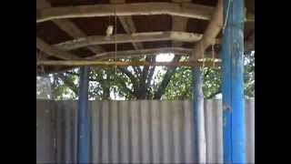 Пасека на даче(, 2014-07-25T18:01:59.000Z)