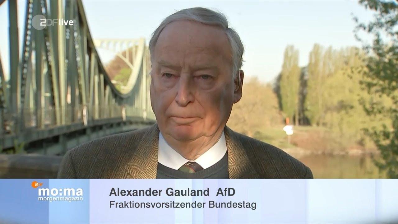 Interview Gauland