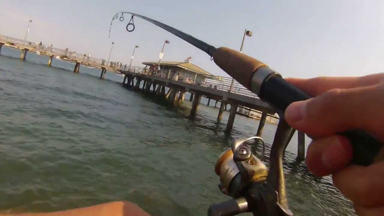 San diego sand bass fishing lrf with ironx action camera for Bass fishing san diego