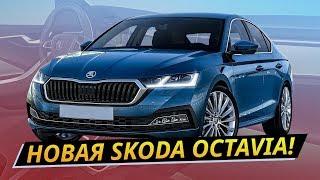 Какой получилась новая Skoda Octavia 2020? | Своими глазами