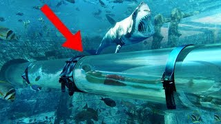 Most THRILLING Waterslides In The World!