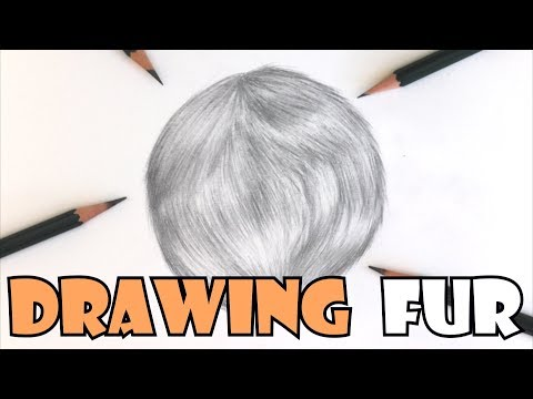 how-to-draw-fur-in-graphite-pencils-|-step-by-step-tutorial