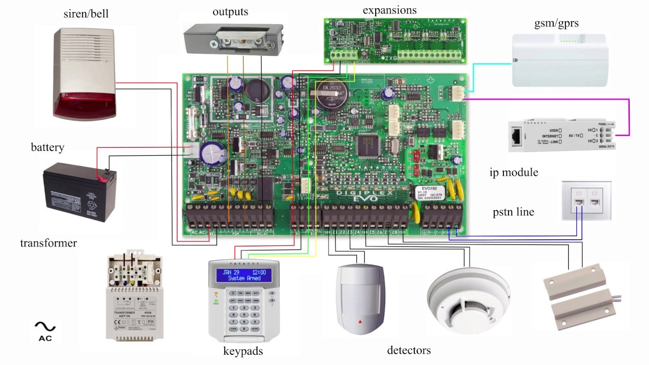 dsc pc5010 wiring diagram gfs lil puncher alarm system panel basic paradox evo youtube