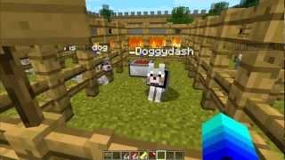 Minecraft Mod: Talento Canino - O Canivete Suico de Quatro Patas