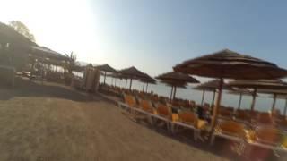 Утро рифы Эйлат