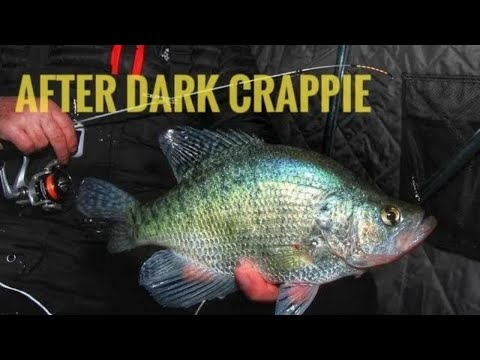 Ice Fishing After Dark CRAPPIE On Lac Qui Parle