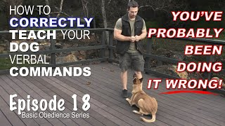 How to CORRECTLY Teach Your Dog Verbal Commands. Episode 18